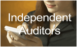 Auditor-for-web-png24.png